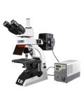 [LB-279] Fluorescent Trinocular Biological Microscope  with Infinite Optical System and Extra Wide Field