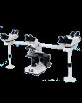[LB-933] Multi-Head Microscope for 5 Users
