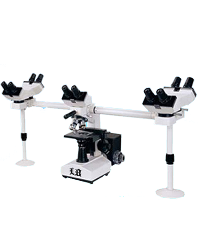 Labomed Microscopes & Cameras // Biological // Multi-Head