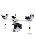[LB-982] Multi-Head Microscope with Trinocular Head